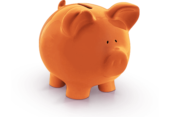 rs-slider3-pig.png
